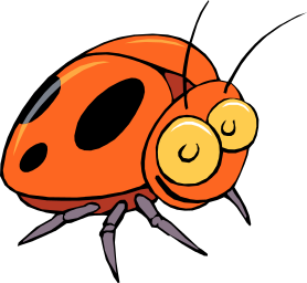 Basic Vocabulary - Animal - Beetle