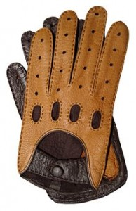 Basic Vocabulary - Clothes - Glove
