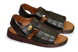 Basic Vocabulary - Clothes - Sandal