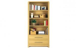 Basic Vocabulary - Furniture - Bookcase